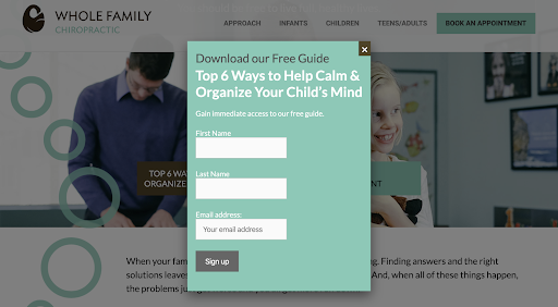 Whole family chiropractor home page screen shot